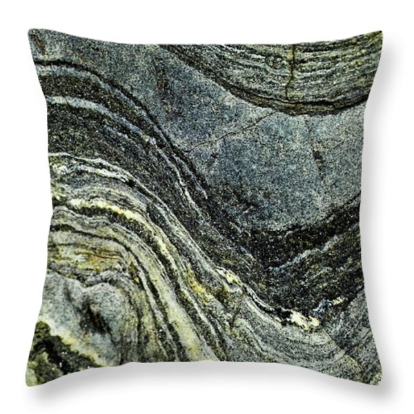 History of Earth 8 Throw Pillow by Heiko Koehrer-Wagner