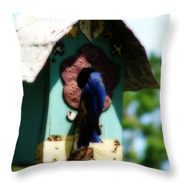 Home Again Throw Pillow by Laura Brightwood