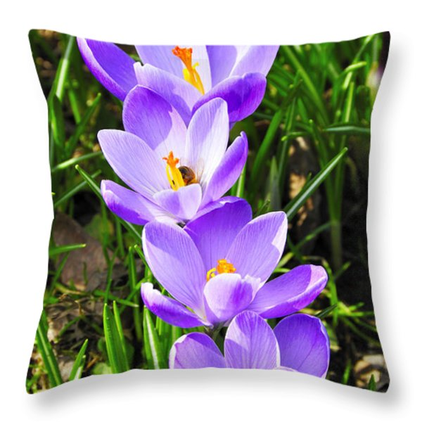Honeybee working Crocus Throw Pillow by Thomas R Fletcher