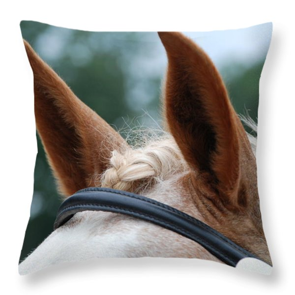 Horse At Attention Throw Pillow by Jennifer Ancker