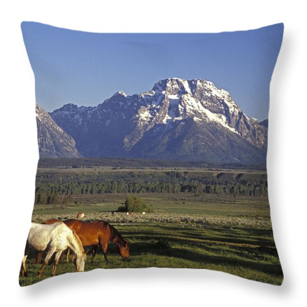 Horses Graze At Lost Creek Ranch Throw Pillow by Richard Nowitz