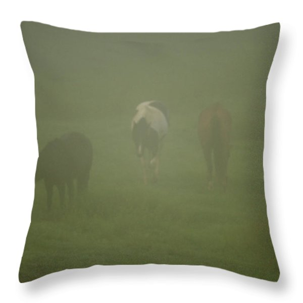 Horses Grazing In The Mist Throw Pillow by Steve Gadomski