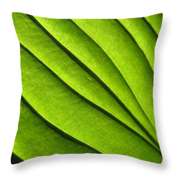 Hosta Leaf 2 Throw Pillow by Dustin K Ryan