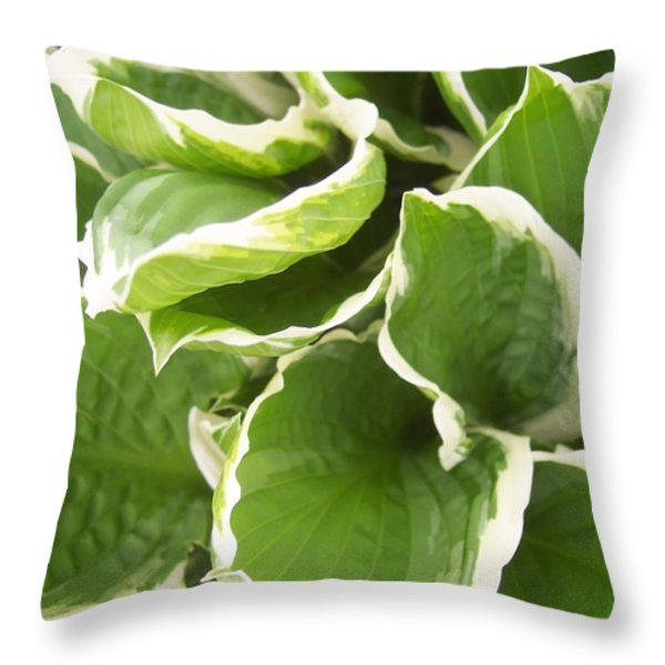 Hostas 2 Throw Pillow by Anna Villarreal Garbis