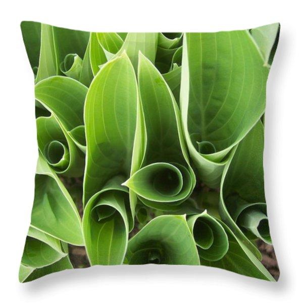Hostas 4 Throw Pillow by Anna Villarreal Garbis
