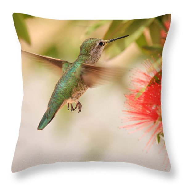 Hummingbird In Paradise Throw Pillow by Penny Meyers