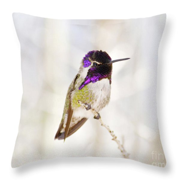 Hummingbird Throw Pillow by Rebecca Margraf