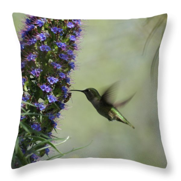 Hummingbird Sharing Throw Pillow by Ernie Echols