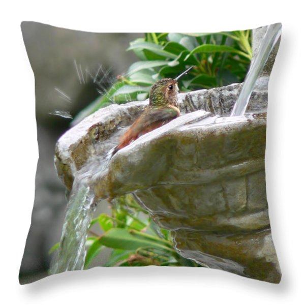Hummingbirds Do Take Baths Throw Pillow by Jennie Marie Schell