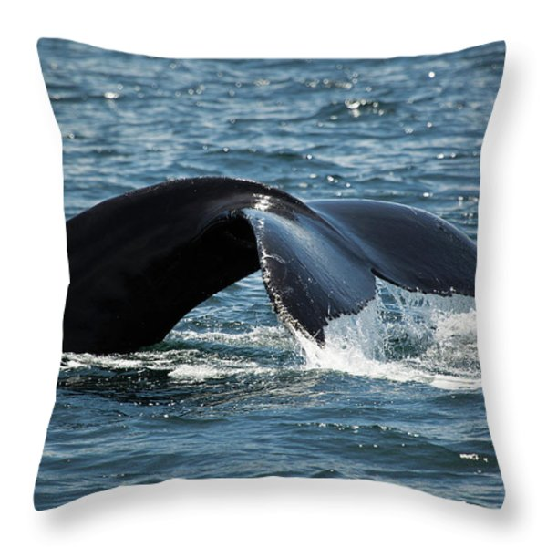 Humpback Whale Tail Cape Cod Massachusetts Throw Pillow by Michelle Wiarda