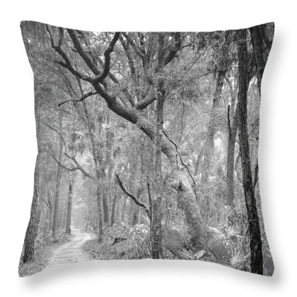 Hunting Island Path  Throw Pillow by Phill  Doherty