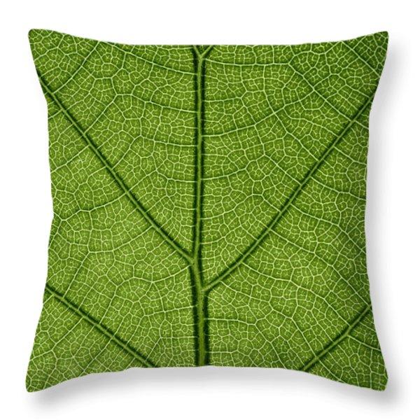 Hydrangea Leaf Throw Pillow by Steve Gadomski