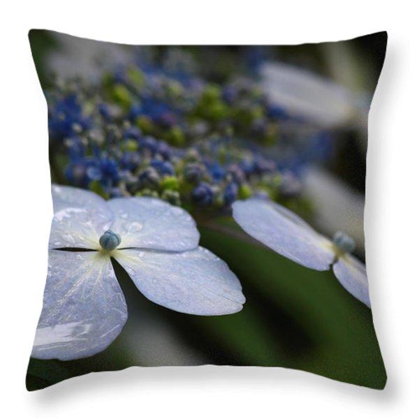 Hydrangea Macrophylla Throw Pillow by Juergen Roth