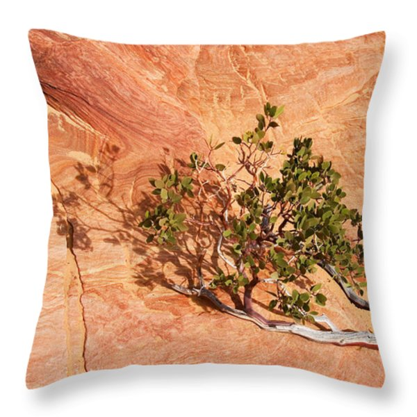 I am the Vine Throw Pillow by Mike  Dawson
