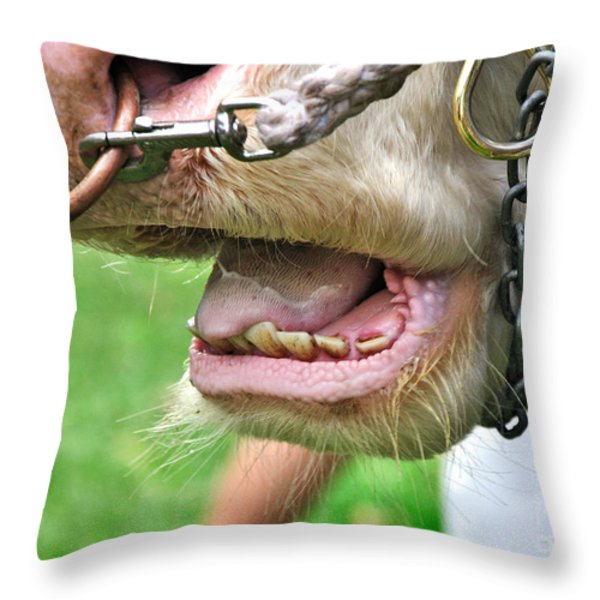 I Need To See My Dentist Throw Pillow by Kaye Menner