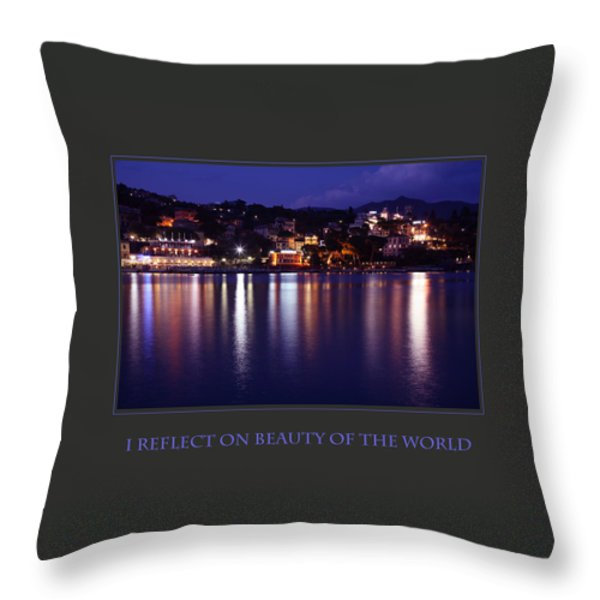 I Reflect On Beauty Of The World Throw Pillow by Donna Corless