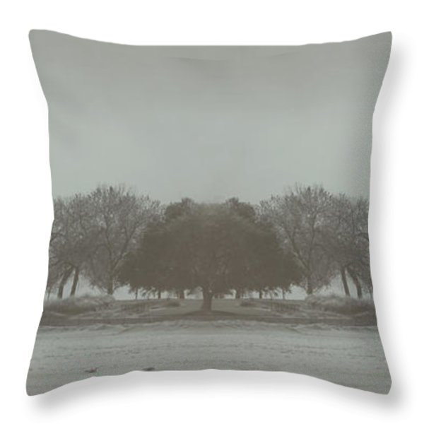 I Will Walk You Home Throw Pillow by Dana DiPasquale