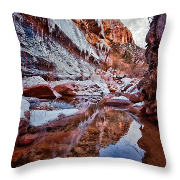Icy Stillness Throw Pillow by Christopher Holmes