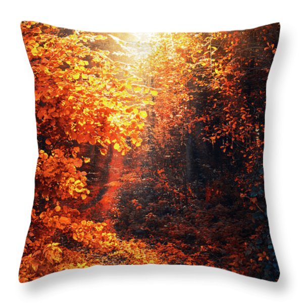 Illuminated Forest Throw Pillow by Wim Lanclus