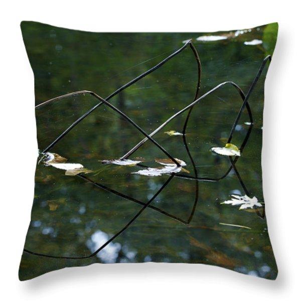 Illusion   Throw Pillow by Jane Eleanor Nicholas
