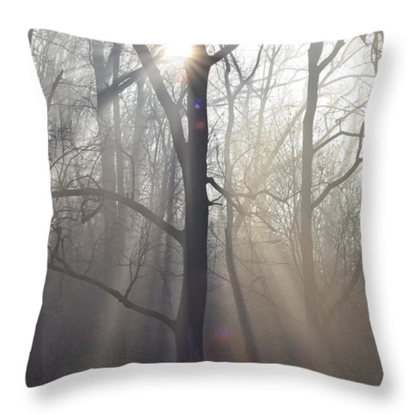 In the Morning Throw Pillow by Bill Cannon