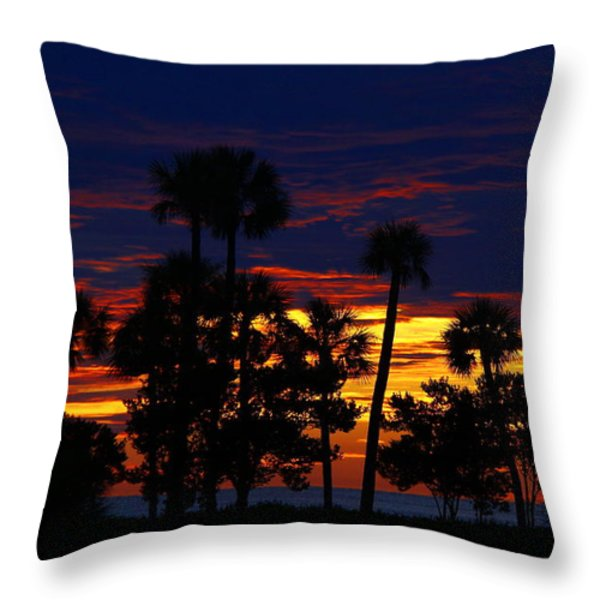 Indigo Sunset Throw Pillow by Barbara Bowen
