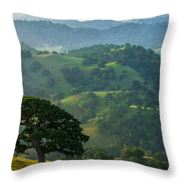 Individuality Throw Pillow by Marc Crumpler