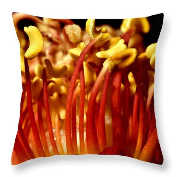 Inside Rose Throw Pillow by Svetlana Sewell