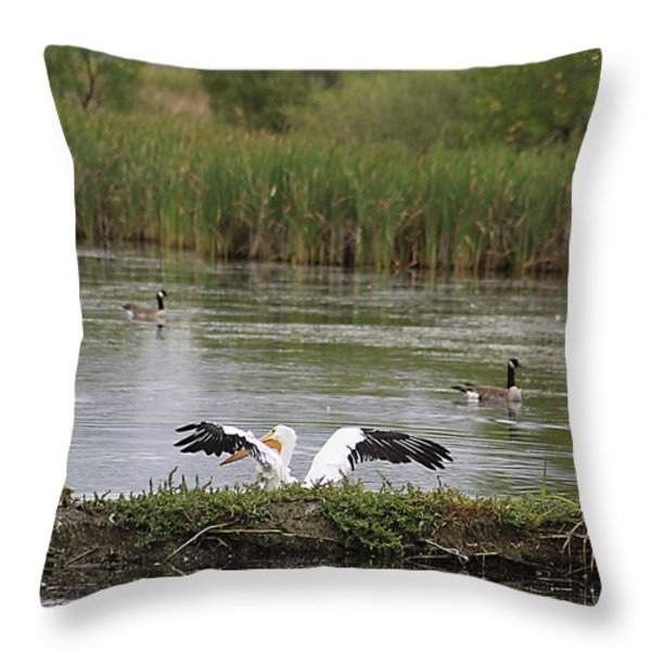 Into The Water Throw Pillow by Alyce Taylor
