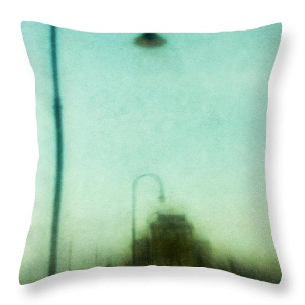 Introspective Throw Pillow by Andrew Paranavitana