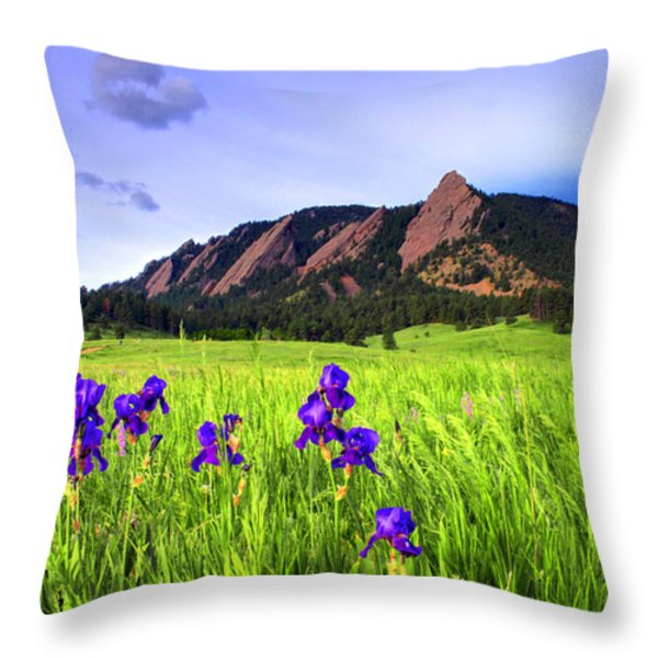 Iris and Flatirons Throw Pillow by Scott Mahon