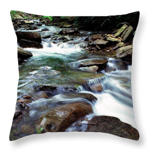 Island Lick Run Throw Pillow by Thomas R Fletcher