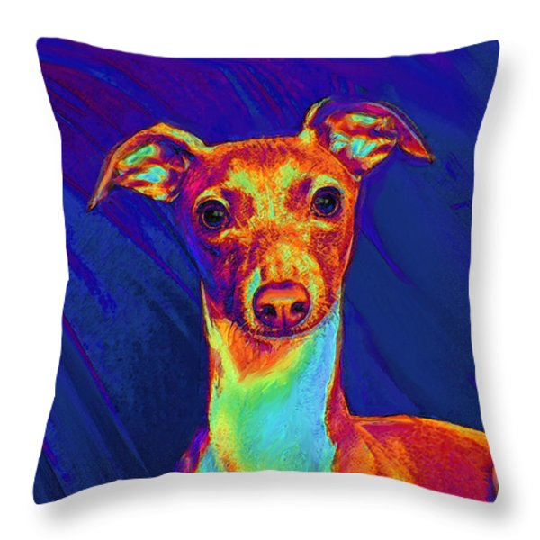 italian greyhound  Throw Pillow by Jane Schnetlage