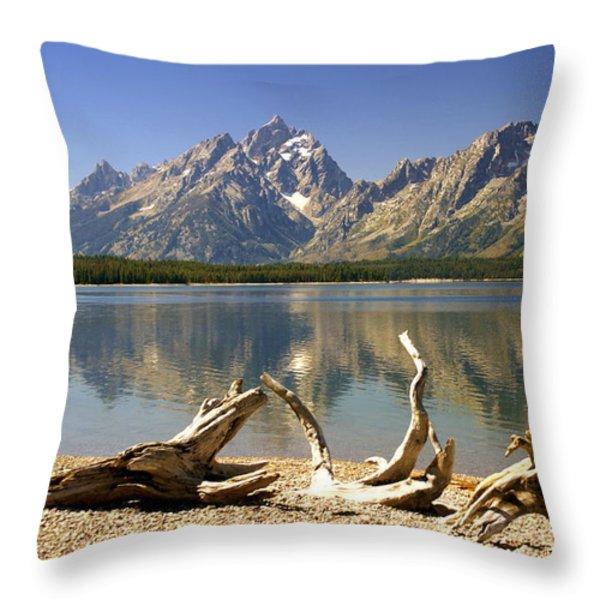Jackson Lake 3 Throw Pillow by Marty Koch