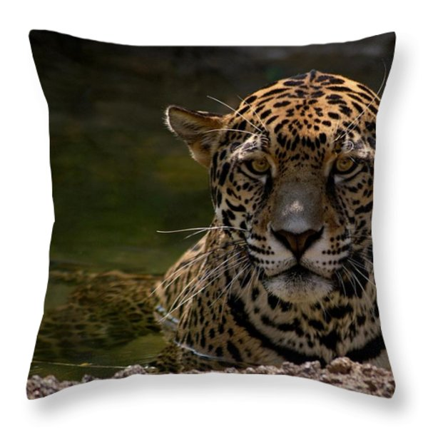 Jaguar in the Water Throw Pillow by Sandy Keeton