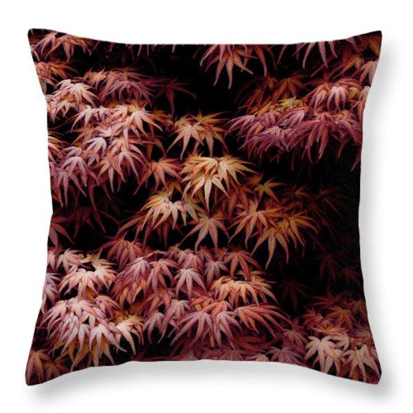 Throw Pillow featuring the photograph Japanese Maple, Acer Palmatum Seigen by Frank Tschakert