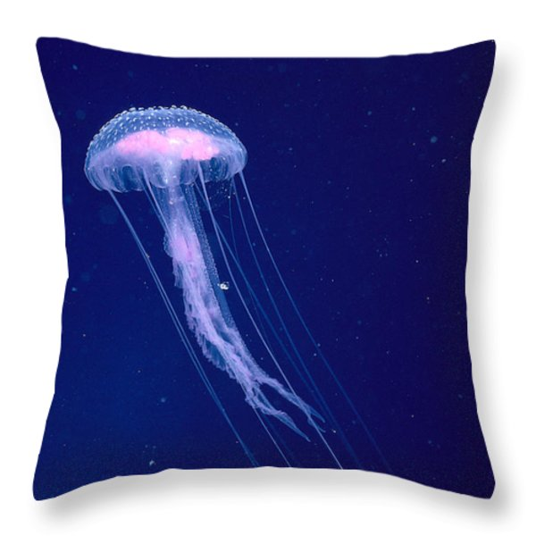 Jellyfish Throw Pillow by Dave Fleetham - Printscapes