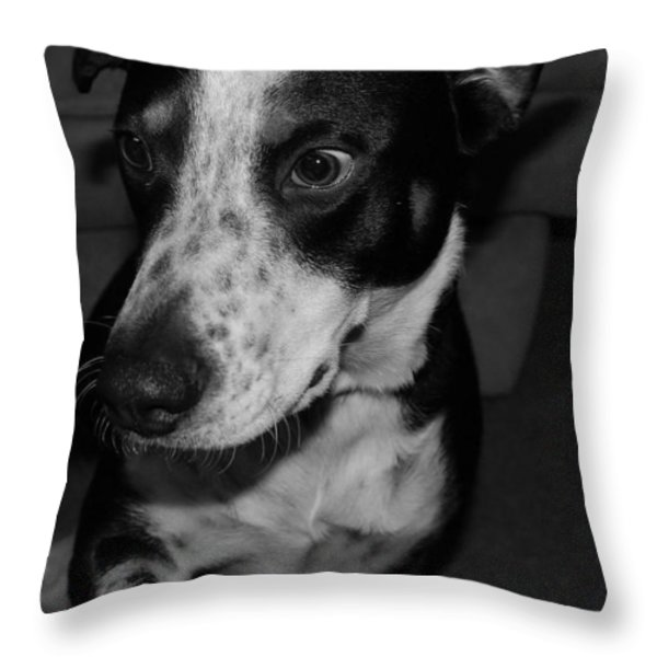 Jimmy Throw Pillow by Rob Hans