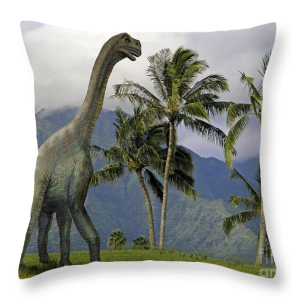 Jobaria in Meadow Throw Pillow by Frank Wilson