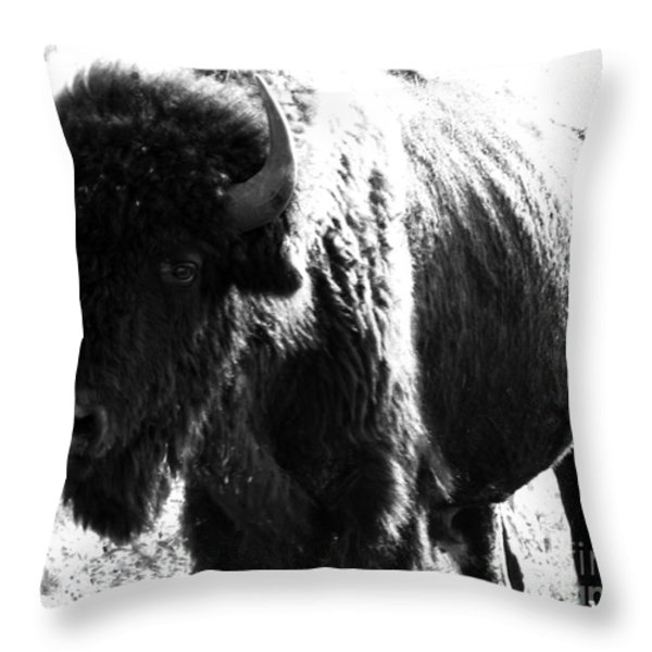 Join The Party Throw Pillow by Amanda Barcon