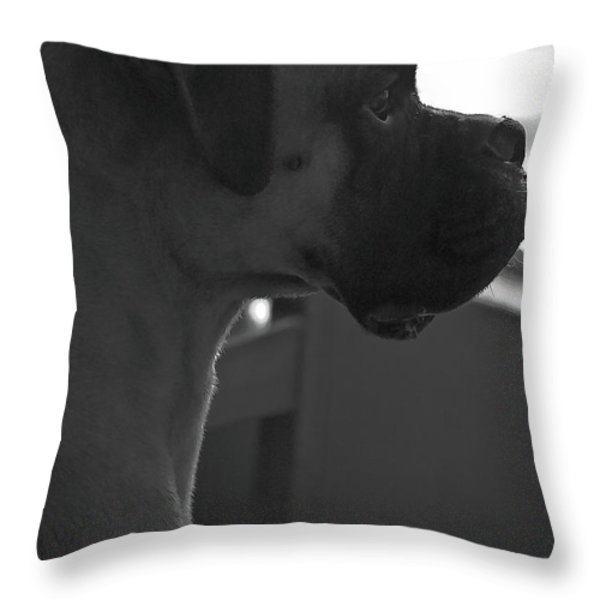 Just Handsome Throw Pillow by DigiArt Diaries by Vicky B Fuller