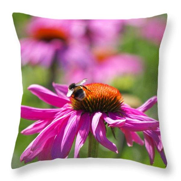 Just Pink  Throw Pillow by Angela Doelling AD DESIGN Photo and PhotoArt