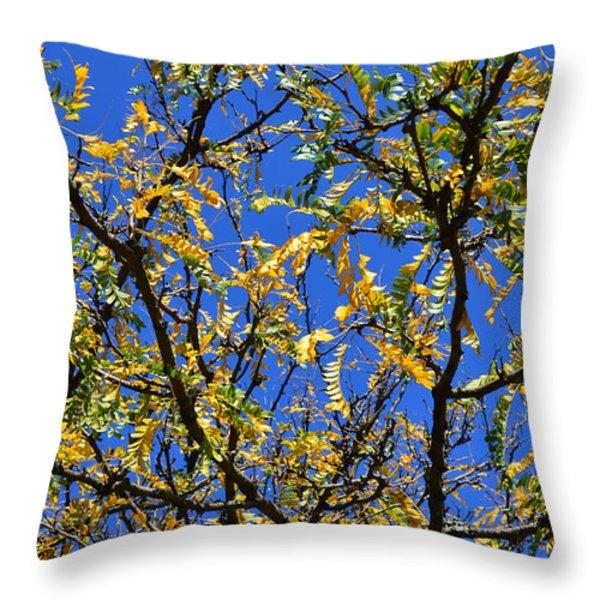 Kaleidoscope Throw Pillow by Corinne Rhode