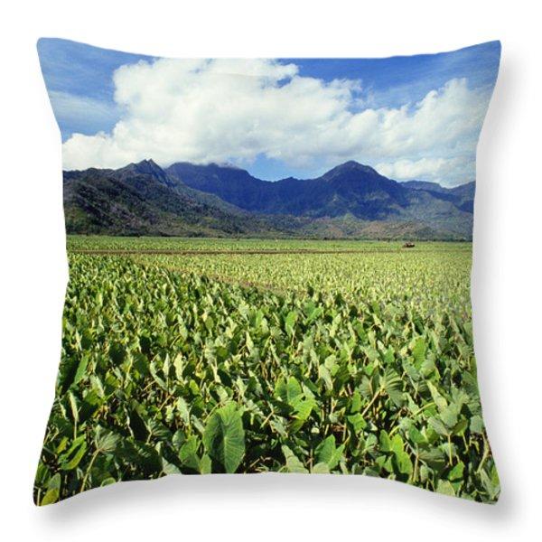 Kauai, Wet Taro Farm Throw Pillow by Bob Abraham - Printscapes