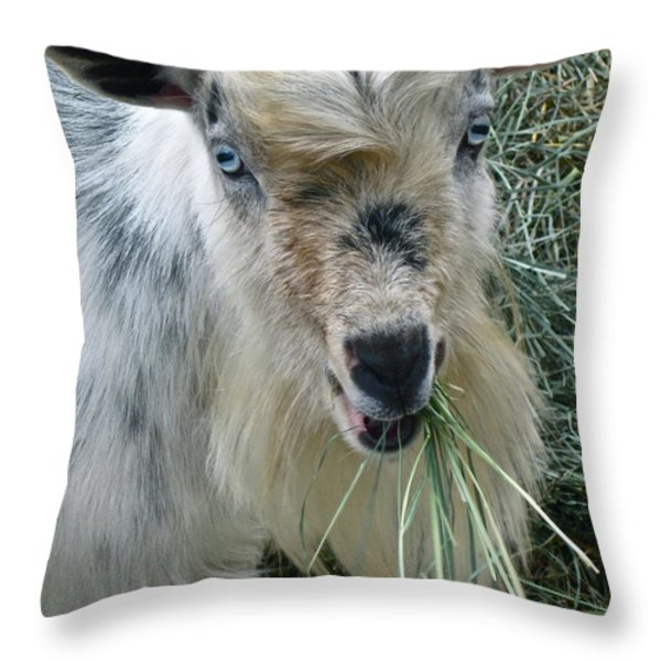 King Of The Road Throw Pillow by Gwyn Newcombe