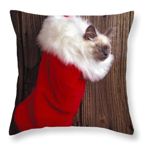 Kitten in stocking Throw Pillow by Garry Gay