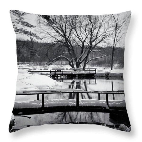 Knapp Creek at Seven Pines Lodge Throw Pillow by Cynthia Dickinson