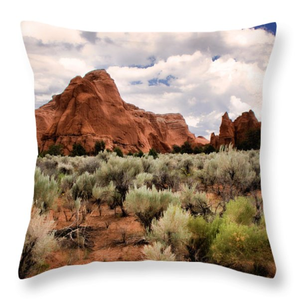 Kodachrome Sage Throw Pillow by Lana Trussell