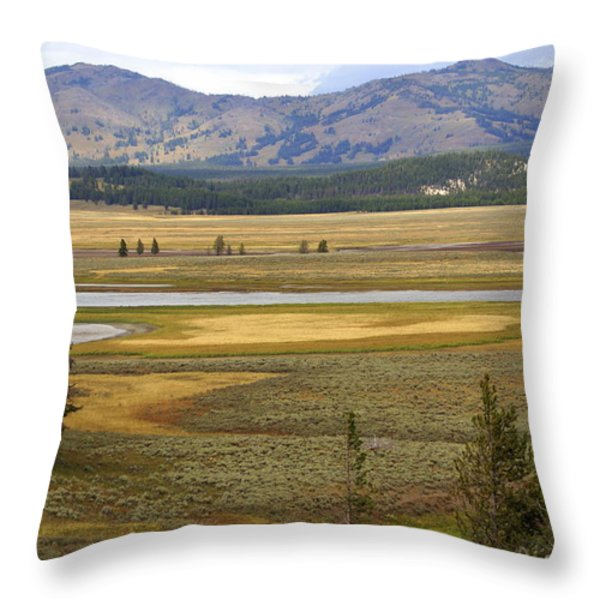 Lamar Valley 1 Throw Pillow by Marty Koch