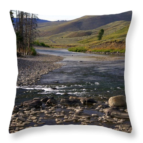 Lamar Valley 3 Throw Pillow by Marty Koch